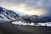 Road at the mountains — Stock Photo