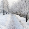 Winter urban landscape - Stock Photo