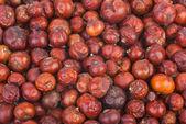 Dried red juniper (Juniperus oxycedrus) berries — Stock Photo