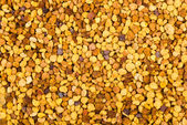 Abstract background: bea gathered pollen granules — Stock Photo
