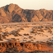 Namib desert — Stock Photo #10771421
