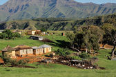 Rural settlement and livestock — Stock Photo