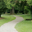Stock Photo: Tranquil park