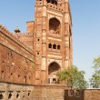 Agra Fort in India — Stock Photo
