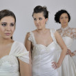 Portrait of a three beautiful woman in wedding dress — Stock Photo