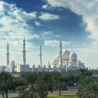 Sheikh zayed mosque — Foto de Stock