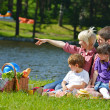 Happy family playing together in a picnic outdoors — Stock Photo #11701063