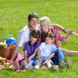 Happy family playing together in a picnic outdoors — Stock Photo #11701329
