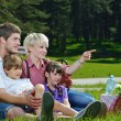 Happy family playing together in a picnic outdoors — Stock Photo #11701858