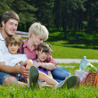 Happy family playing together in a picnic outdoors — Stock Photo #11701863
