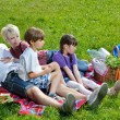 Happy family playing together in a picnic outdoors — Stock Photo #11702164