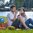 Happy young couple having a picnic outdoor — Stock Photo #11703034