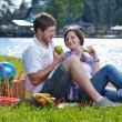 Happy young couple having a picnic outdoor — Stock Photo #11703050
