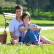 Happy young couple having a picnic outdoor - Stock Photo