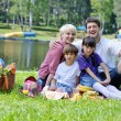 Happy family playing together in a picnic outdoors — Stock Photo #11708820