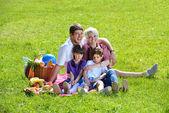 Gelukkige familie samenspelen in een picknick in de buitenlucht — Stockfoto