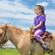 Child ride pony - Stock Photo