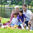 Happy family playing together in a picnic outdoors — Stock Photo #11938344