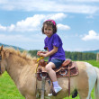 Stock Photo: Child ride pony
