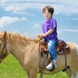 Royalty-Free Stock Photo: Child ride pony