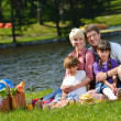 Happy family playing together in a picnic outdoors — Stock Photo #11939229
