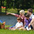 Happy family playing together in a picnic outdoors — Stock Photo #11939269