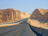 Road trough the Desert — Stock Photo