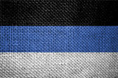 Flag of estonia — Stock Photo