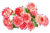 букет красивых роз. — Стоковое фото