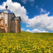 Old brick church on dandelion field — Stockfoto