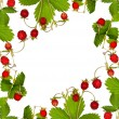 Wild strawberry with leaves frame — Stock Photo #12356640