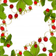 Stock Photo: Wild strawberry with leaves frame
