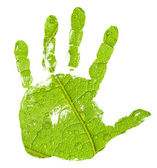 Hand imprint on green leaf background — Stock Photo