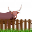 Bull in grass near fence isolated on white — Stock Vector #12356931