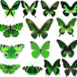 Fourteen green butterflies isolated on white — Stock Vector