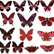 Fourteen red butterflies isolated on white — Stock Vector