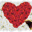 Royalty-Free Stock Vector Image: Red rose heart in white flowers