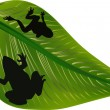 Frog shadows on green leaf - Stock Vector