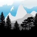 Постер, плакат: Firs and pines near mountains