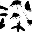 Stock Vector: Eight insect silhouettes isolated on white