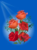 Five red roses on blue background — Stock Vector