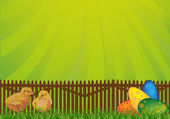 Chickens and egges near fence — Stock Vector