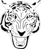 Tiger head isolated on white — Stock Vector
