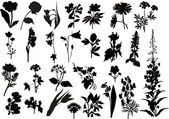 Collection of black flower silhouettes — Stock Vector