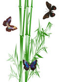 Butterflies and green bamboo on white — Stock Vector