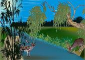 近水在森林中的鹿 — 图库矢量图片