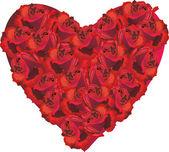 白底红玫瑰心 — 图库矢量图片