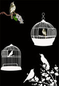 Birdcages and birds isolated on black — Stock Vector