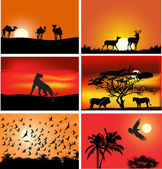 Set of six animals at sunset compositions — Stock Vector