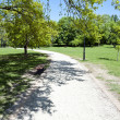 Road in the park by summer — Stock Photo #10772384